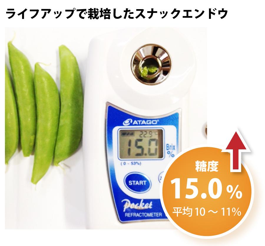 ライフアップで栽培したスナックエンドウ