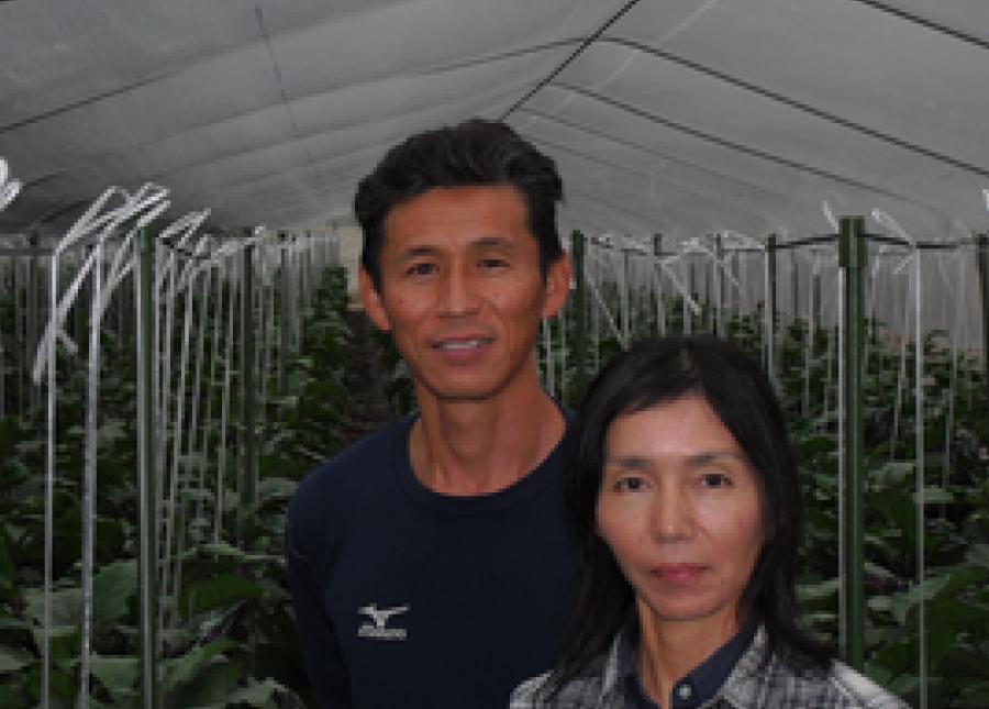 熊本の茄子農家さん